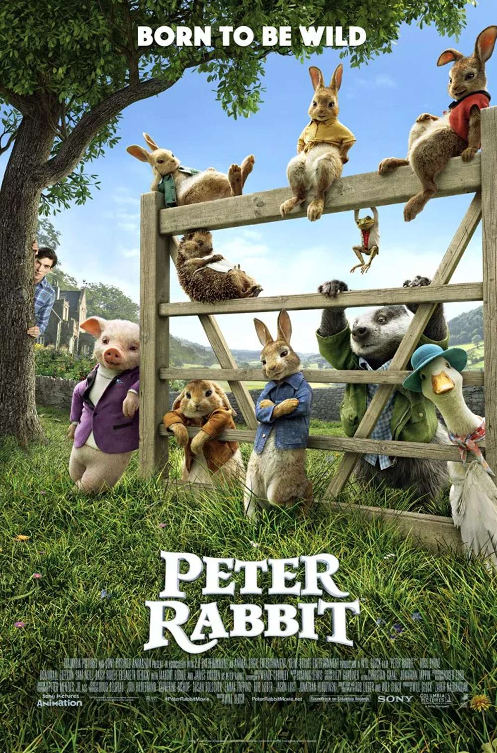 Poster for Peter Rabbit (2018)